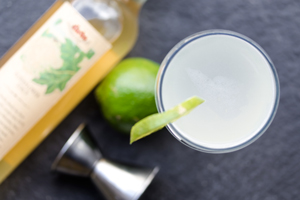 Elderflower-Vodka-Gimlet_MARXFOODS_THUMB