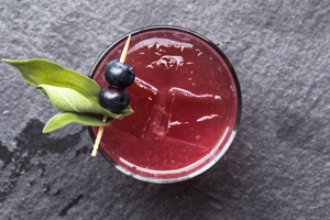Huckleberry-Sage-Shrub-Cocktail_MARXFOODS_THUMB