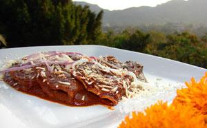 Dobladillas with Mole de Guajolote
