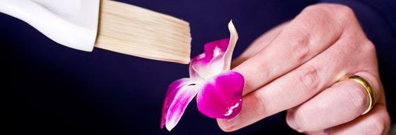 brushing-egg-whites-orchid