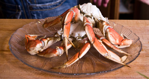 cleaned-dungeness-crabb