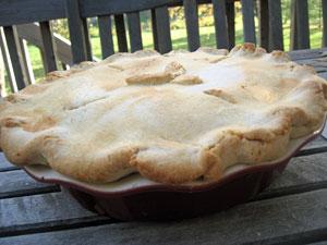 SG's Chicken Pot Pie