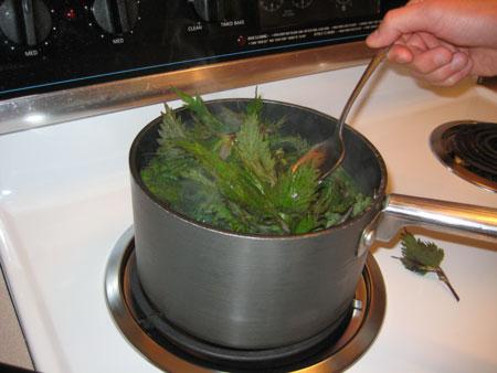 cooking-nettles.jpg