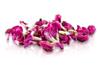 Fresh Fava Flowers