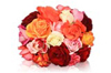 Edible Roses for Sale