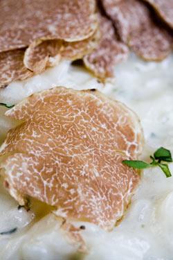 fresh-sliced-white-truffle