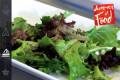 jam_salad_dressing_THMB_
