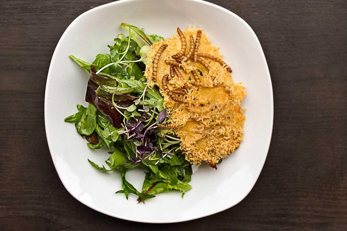 Beetle Parmesan Crisps