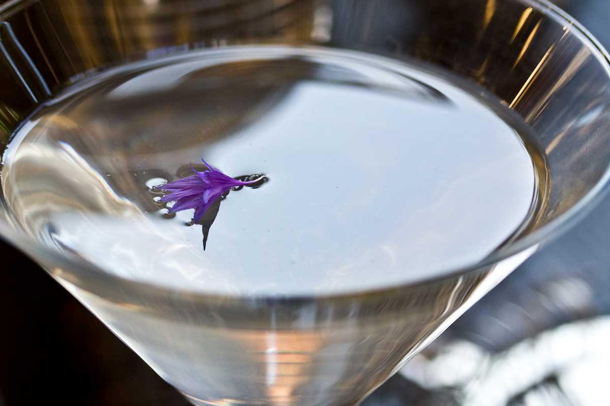Lavender Martini Cocktail