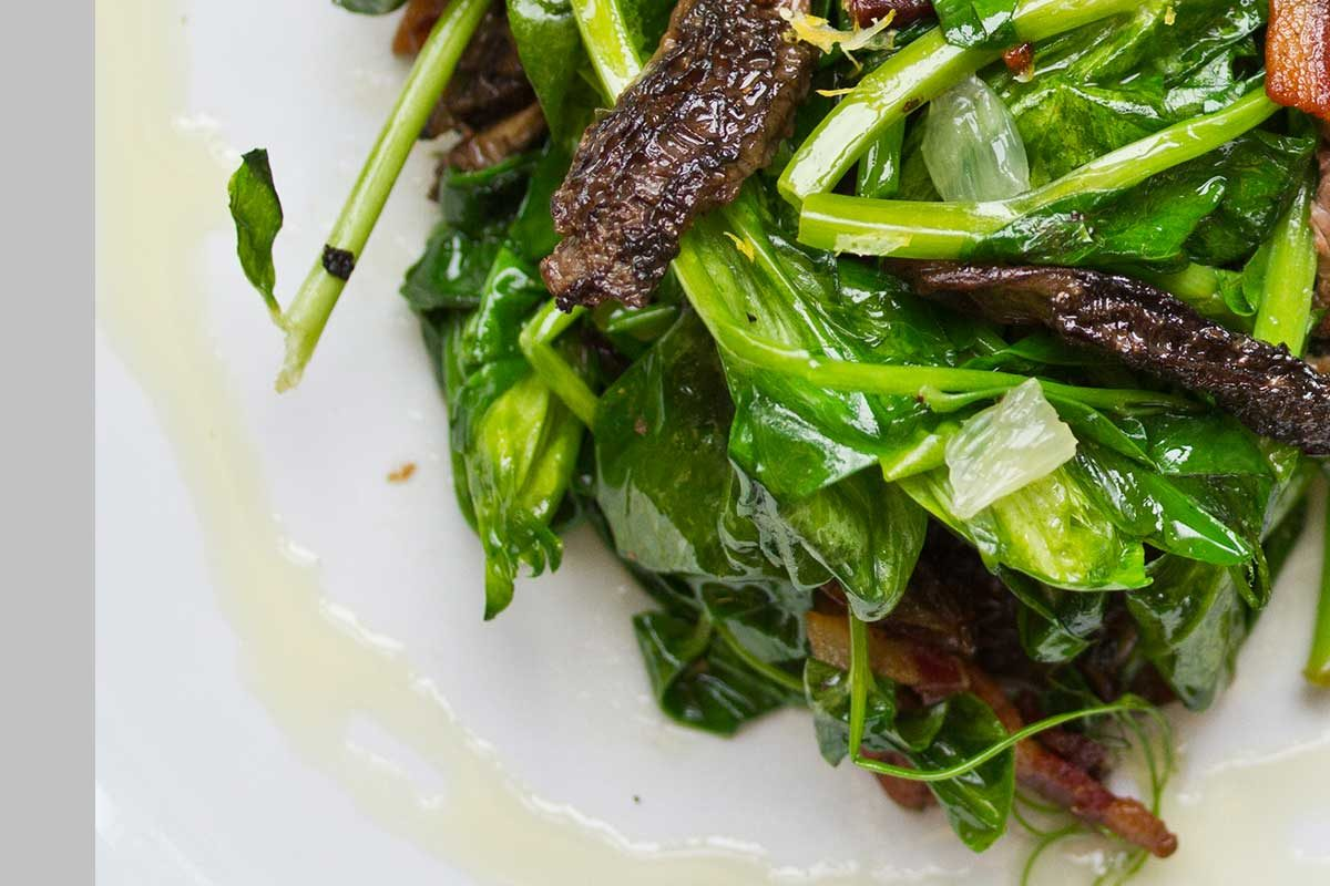Morels with Bacon & Pea Shoots