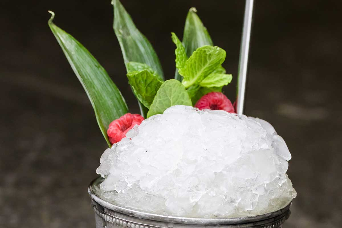 Tropical Rum Mint Julep