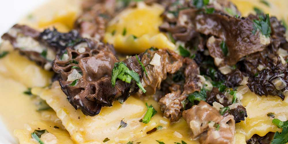 Truffle Ravioli w/ Morel Cream Sauce