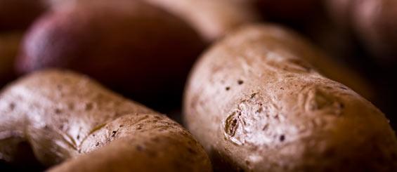roasting-heirloom-potatoes