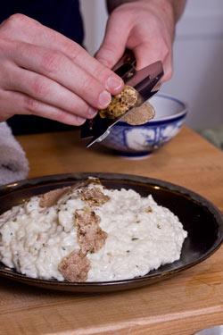 using-fresh-alba-truffles