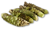Fresh Wasabi Recipes