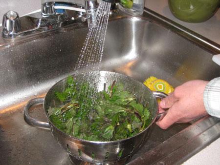 washing-nettles.jpg